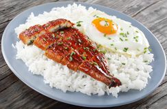 Broiled unagi with rice and egg. Broiled unagi or eel with tare sauce sprinkled with chopped chives served with rice and sunny side up fried egg on plate royalty free stock photo