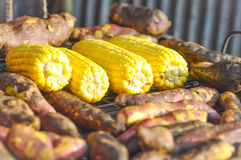 Broiled yam and broiled corn on broiled Stock Images
