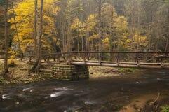 brokamenice över floden Arkivbild