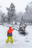 Broke down tree on the severity of fallen snow. Child pointing  Royalty Free Stock Photography