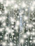 Brokeh della neve e del ghiaccio Fotografia Stock
