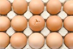 broken ägg royaltyfria bilder