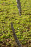 Broken. A broken fence post attached to barbed wire Royalty Free Stock Image