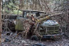 Abandoned old-style military track stays in forest in Chernobyl Exclusion Zone. Broken tree lays on its hood royalty free stock images