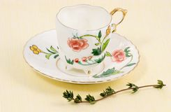 Broken, aged, still beautiful. Fifty plus years of wear and tear and mending, yet still, thyme does not mask the beauty of this beloved tea cup Stock Image