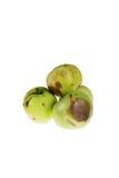 Broken apples Royalty Free Stock Image
