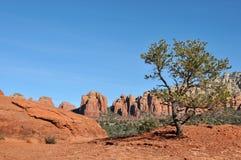 Broken Arrow Trail. Breathtaking scenery along the Broken Arrow trail in Sedona, Arizona royalty free stock images