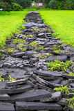 The broken asphalt in the green grass. The contrast of beautiful grass and ugly pieces of cracked asphalt Stock Photo