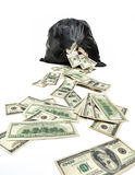 Broken bag of money Stock Photography