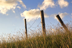 Broken barbed wire fence. In long grass Stock Image