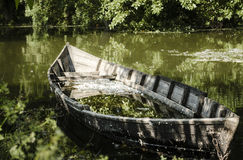 A broken boat. In green water Royalty Free Stock Image