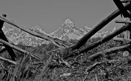 Broken borders. National Elk Refuge bordering Grand Teton National Park Royalty Free Stock Images