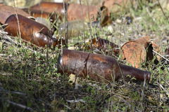 Broken Bottles Tin Cans. Disguarded bottles and cans that have started to disintegrate in grass Stock Photo