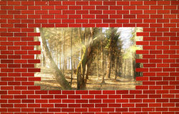 Broken Brick Wall Stock Photos