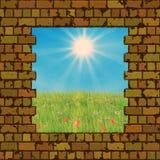 Broken brick wall and grass field royalty free illustration