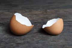 Broken brown egg shell. Stock Photos