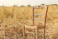 Broken chair on yellow grass Royalty Free Stock Photo