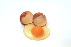 Broken chicken egg and shell Royalty Free Stock Photos