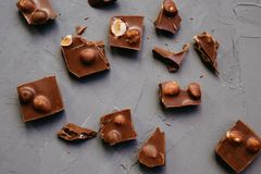 Top view Broken chocolate pieces with hazelnuts on gray background stock photography
