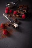 Broken chocolate pieces Stock Photography