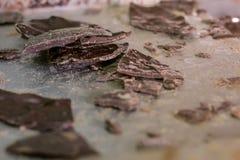 broken choklad Fotografering för Bildbyråer
