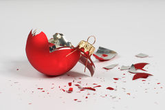Free Broken Christmas Bal Stock Image - 7640741