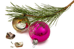 Broken Christmas ball lies beneath branch of the pine, isolated Stock Image