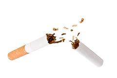 Broken cigar. Against a white background Stock Image