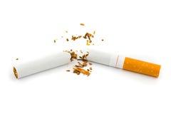broken cigarett Fotografering för Bildbyråer