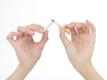Broken cigarette. Closeup of female  hands breaking a cigarette in two isolated on white Royalty Free Stock Photo