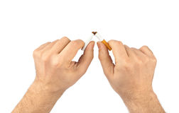 Broken cigarette in hands Royalty Free Stock Image