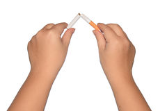 Broken cigarette in womens hands  Royalty Free Stock Image