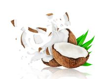 Broken coconut into two pieces with milk splashes. Isolated on white background Royalty Free Stock Image