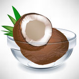 Broken coconut and whole coconut in bowl Stock Image