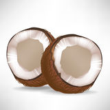 Broken coconuts Royalty Free Stock Photos