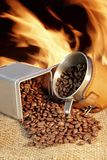 Broken coffee beans XXXL Royalty Free Stock Images