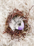 Broken Colored Egg Shell In A Nest Royalty Free Stock Images