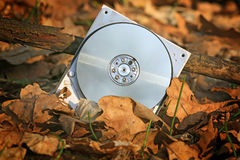Broken computer hard drive in forest Royalty Free Stock Image