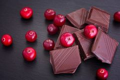 Broken dark chocolate and cranberry. stock images