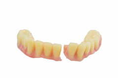 Broken denture isolate Stock Image