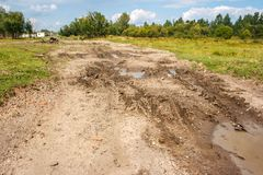 Broken Dirt Road With Puddles In The Forest Stock Photos