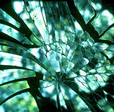 Broken dirty glass Stock Photos