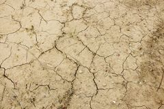 Broken earth. Pattern of dry earth by lake Royalty Free Stock Photo