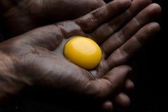 Broken egg Stock Photo