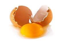 A broken egg Stock Image