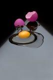 Broken egg. A broken egg with a red shell stock photos