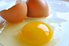 Broken egg. A broken egg and eggshell Royalty Free Stock Photos