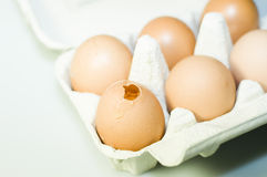 Broken egg Stock Images