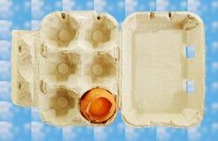 Broken egg in a box. Stock Photography