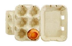 Broken egg in a box. Stock Photos